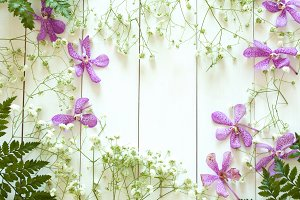 Mix of flowers flat lay on white wood with copy space inside, such as purple orchid, palm leaf, gypso