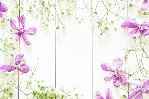 Mix of flowers flat lay on white wood with copy space inside, such as purple orchid, and gypso