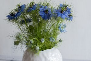 blue flowers in a clay vase