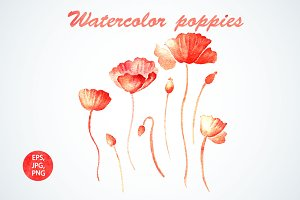 Set with watercolor poppies