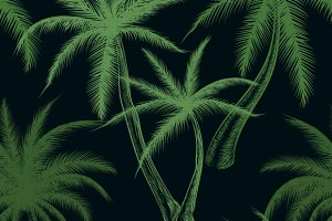 Tropical palm trees leaf pattern