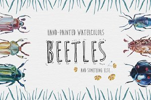 Beetles Plants Watercolor Clipart