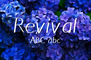 Revival Typeface