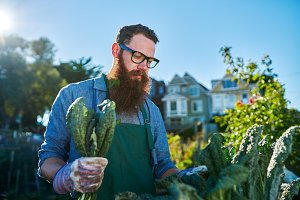 bearded guy gardening in city