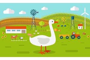 Goose on Farmyard