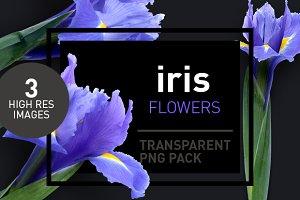 Iris Florals - Transparent Pngs