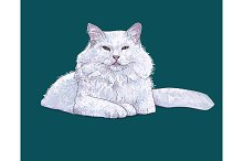 White furry cat laying on green