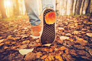 Feet sneakers walking on fall