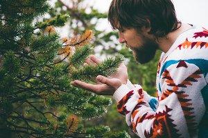 Man hands holding fir tree branch