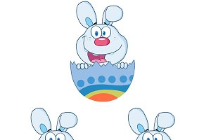 Cute Blue Bunny Collection