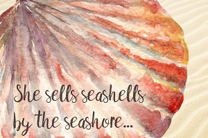 Watercolor Seashells Set - 8Png