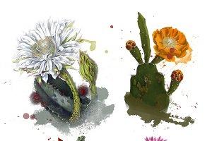 Flowering Cactus Blendables - 4 PNGS