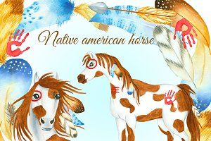 Native american horse and featers