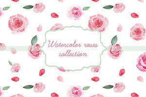 Watercolor roses collection
