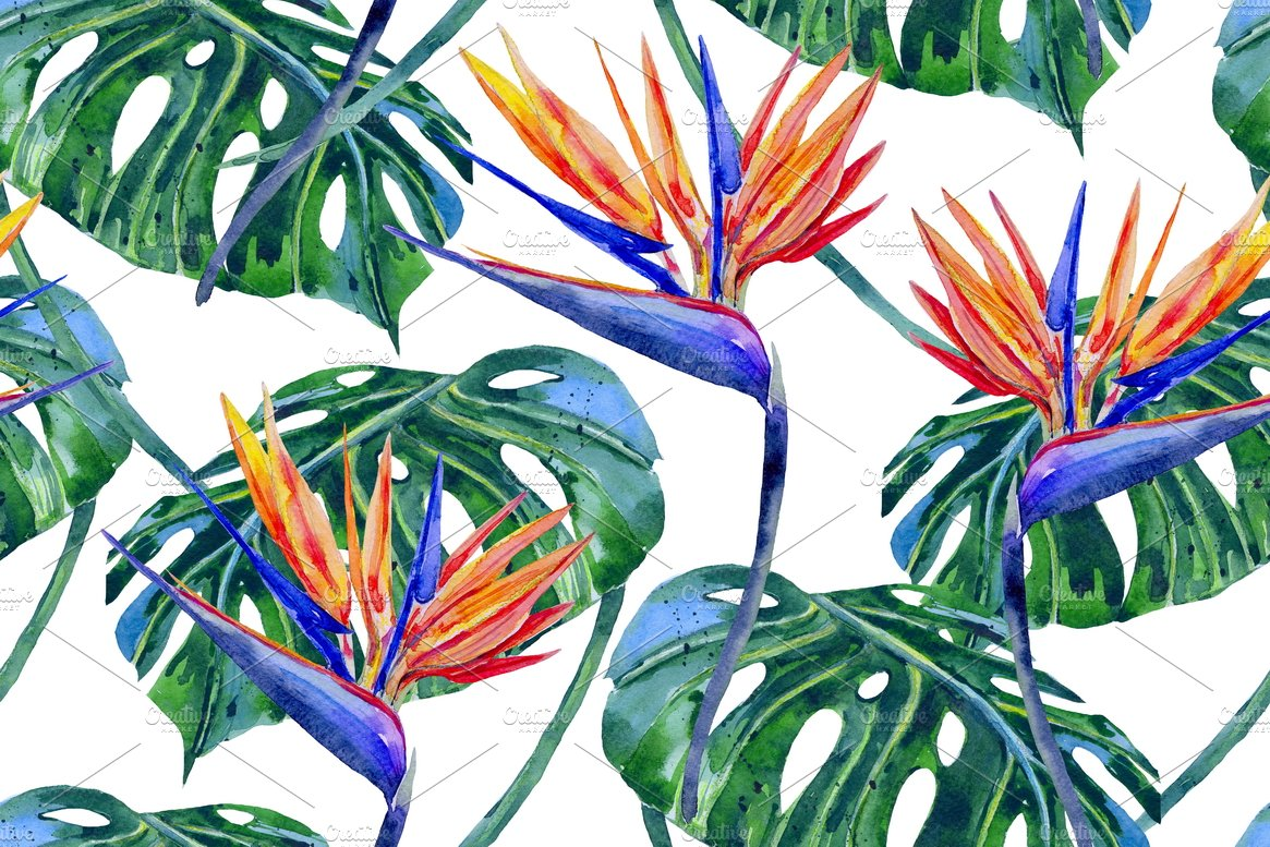 Summer Tropical Floral Pattern Graphic Patterns Creative Market