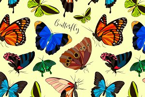 Butterflies set pattern
