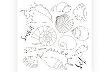 hand drawn seashell icons