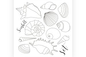 hand drawn seashell icons
