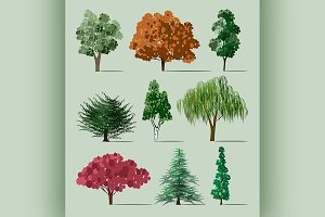 Trees sketch set