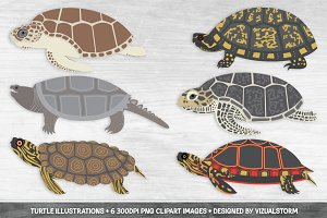 Turtle Clipart Illustrations