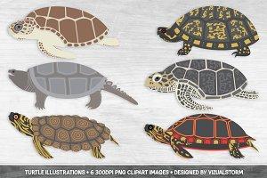 Turtle Clipart Illustrations