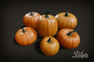 Pumpkin Basic Selection