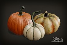 Pumpkin Selection 01 by  in Food