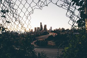 Seattle - Through the fence