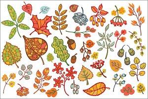 Autumn leaves set. Vector Clipart