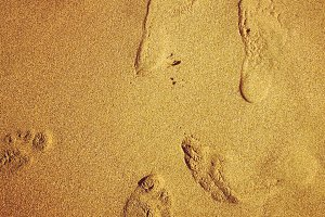 Foot Prints in Sand Beach