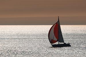 Silver sailing