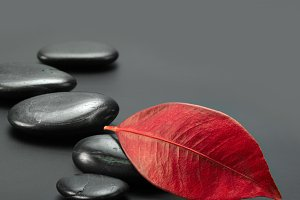 black stones with leaf
