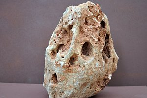stones liked skull