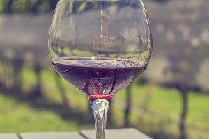 Wineglass with red wine in vineyard