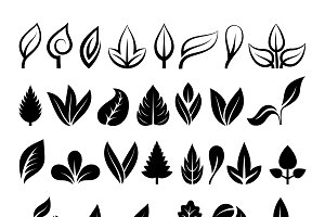 Green leaf eco design vector
