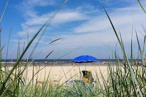 Baltic beach. Summer