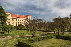 Castle Bucovice