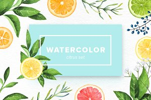 Watercolor Citrus Set