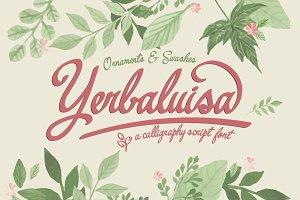 Yerbaluisa, calligraphic font