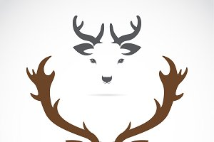 Vector image of a deer head.