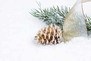 Christmas Cone in Snow