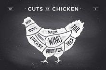 Cut of meat set, chalkboard. Chicken