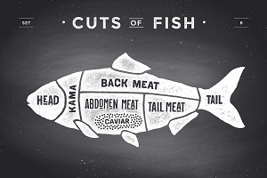 Cut of meat set, chalkboard. Fish
