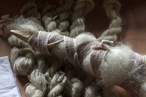 Raw Wool Prepared for Spinning
