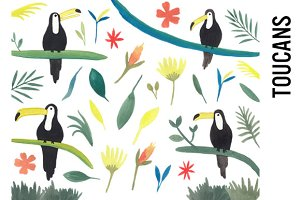 Toucan Jungle Watercolor Clipart