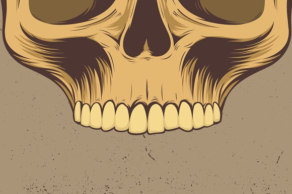 Skull Vector Illustration in Illustrations - product preview 3