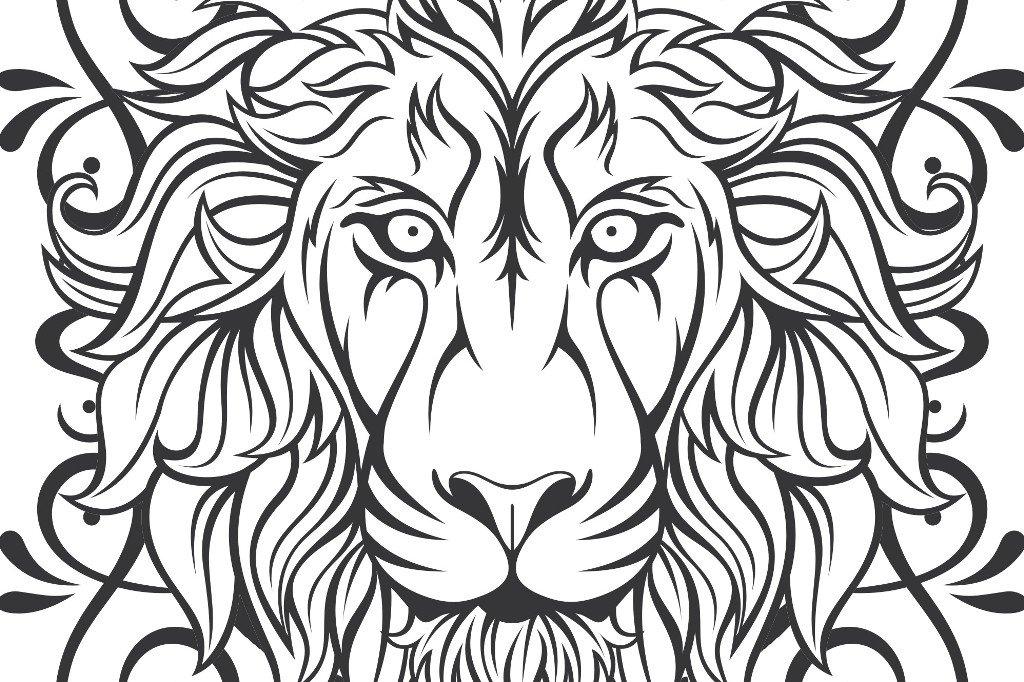 Lion Vector + frame ~ Illustrations ~ Creative Market