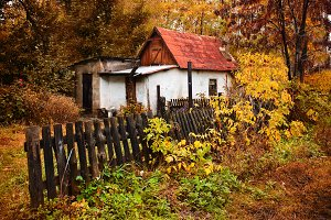 small house in the autumn forest