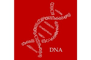 DNA helix shape