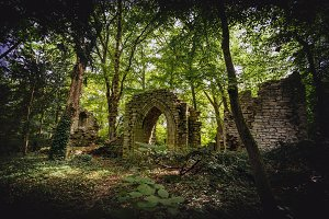 Stone ruins in a forest